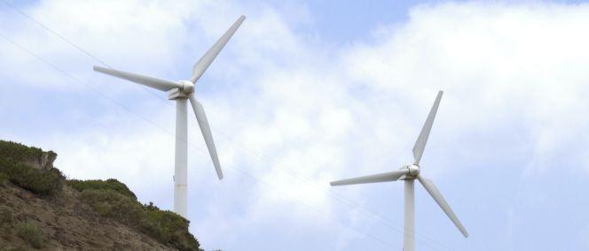 Industria suaviza la norma tras fracasar la asignación del cupo eólico canario