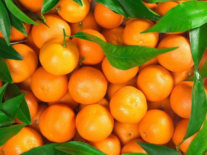 Las naranjas causan un conflicto entre España y Sudáfrica
