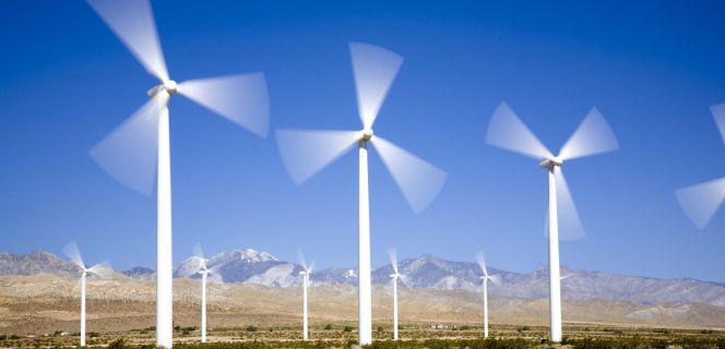 El Supremo ve inconstitucional el recorte de las renovables