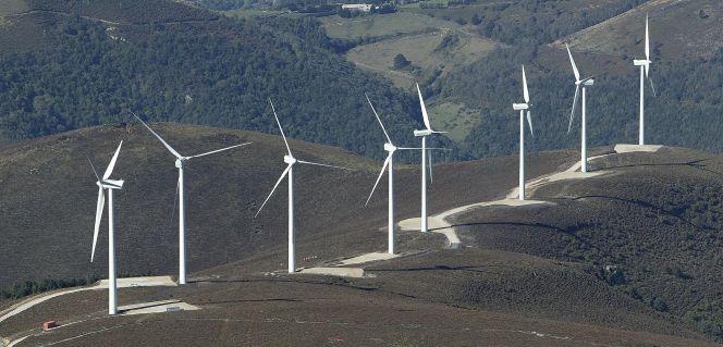 Forestalia se lleva más de la mitad de la subasta renovable sin prima