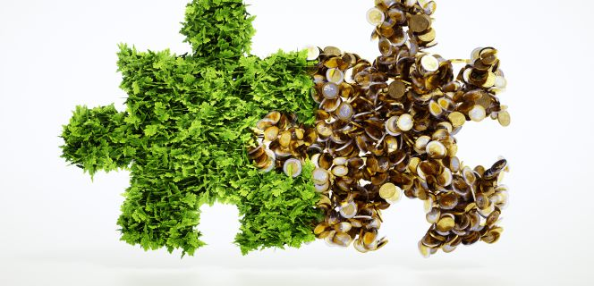 ¿Un sistema financiero que asegure el desarrollo sostenible?