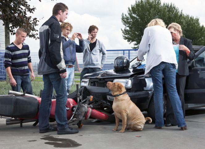 Derechos del autónomo tras un accidente de tráfico