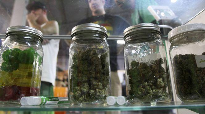 Florida y California aprueban la legalización de la marihuana